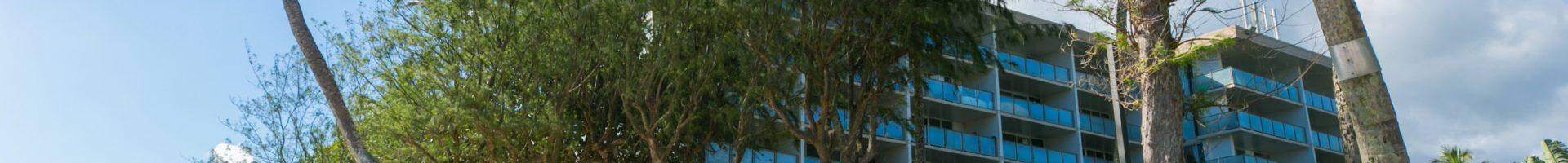 HAUULA | 53-549 KAMEHAMEHA HWY, #201