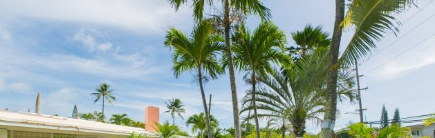 KAILUA BEACHSIDE | KAAPUNI ASSOCIATION